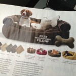 Pet pillow and bed from Skymall catalog